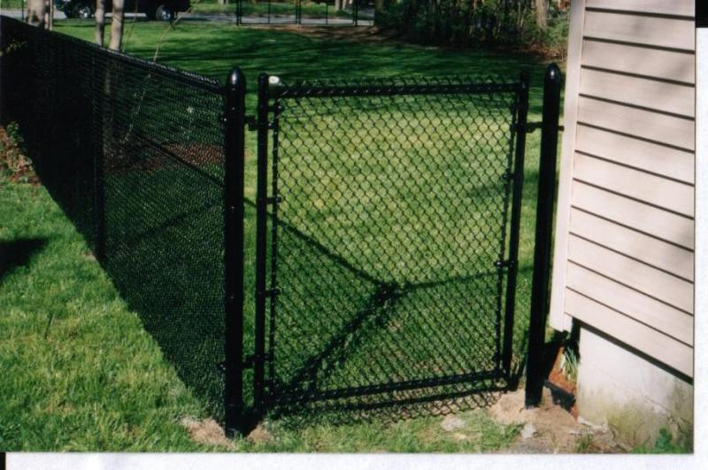coated chain link fence  1